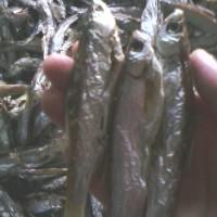 淡水刁子鱼干 绿叶阳干绿色鱼干系列
