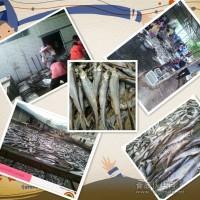 配方鱼干厂家 洪湖鱼干生产批发基地 休闲鱼厂家供货商