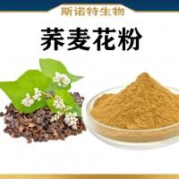 荞麦花粉 斯诺特生物供应荞麦花粉提取物 新资源食品
