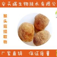 猴头菇提取物-厂家  猴头菇粉