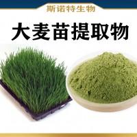 大麦苗提取物 水溶性大麦苗粉 大麦苗青汁粉